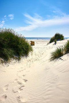 Stranddag op Amrum van Reiner Würz / RWFotoArt