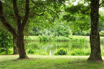 Blick auf den Teich im Park von Corinne Welp