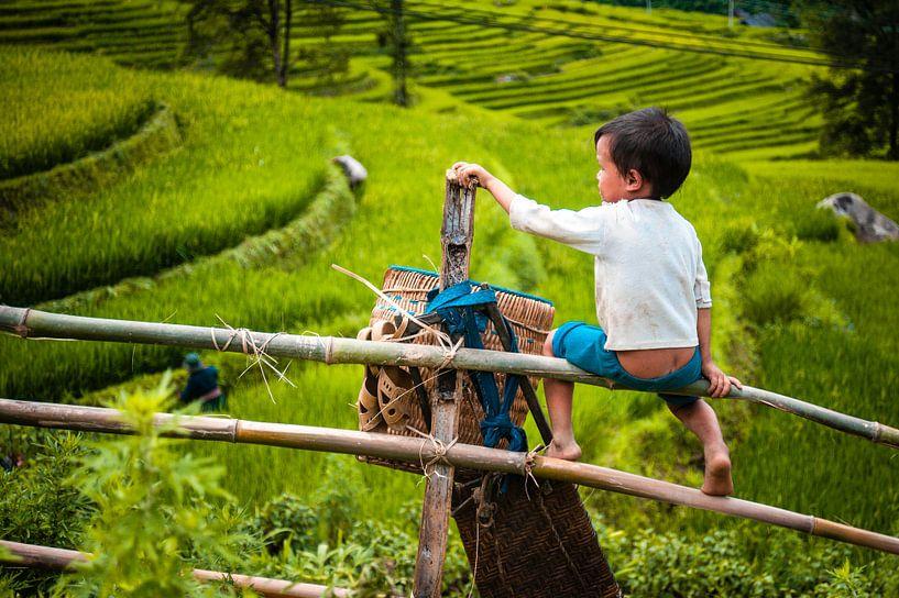 Kind op hek van Sebastiaan Hamming