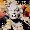 Marilyn Monroe van Michiel Folkers thumbnail