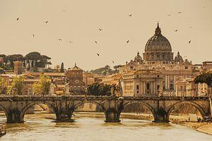 Rome, Italy van