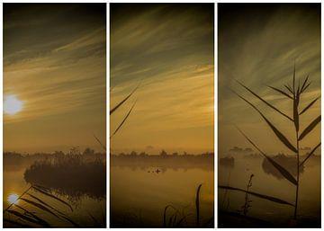 lauwersmeer drieluik 12 van anne droogsma