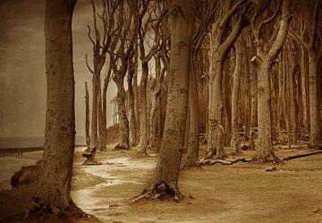 Der Gespensterwald sur Heike Hultsch