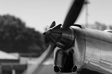 Propeller van Peter Pruydt