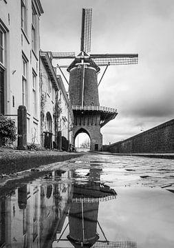 Molen Rijn en Lek - Wijk bij Duurstede von Michel de Nijs Bik