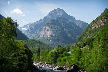 Wandern am Lago di Vogorno von Martijn Diepenbach