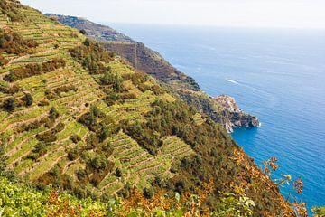 Cinque Terre vanaf boven van Tess Groote