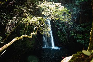 Op pad naar de waterval III | Een reis over Sao Miguel, de Azoren van Roos Maryne - Natuur fotografie
