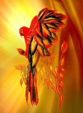 Roses parrot van Dusanka Djeric