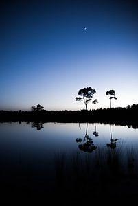 Blauwe zonsondergang van