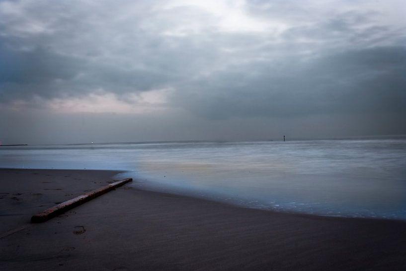stuk hout in de zee van Rubin Versigny