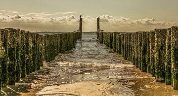 zoutelande zeeland von