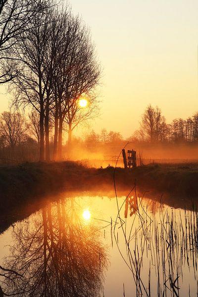 Golden sunrise van LHJB Photography
