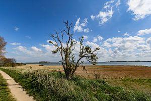 Entlang der Küste bei Glutzow, Insel Rügen
