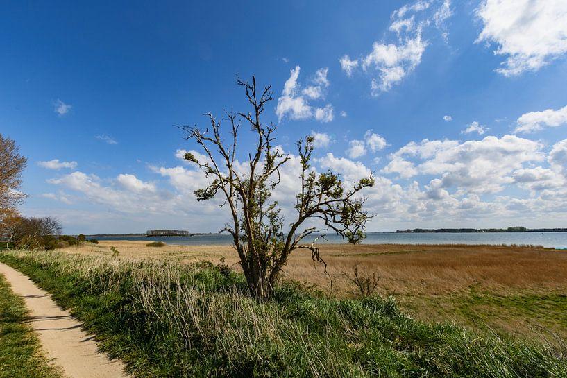 Entlang der Küste bei Glutzow, Insel Rügen von GH Foto & Artdesign