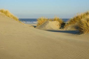 Strand en Duinen von Michel van Kooten