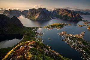 Reinefjorden view