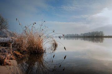 Rietpol  van Jos Reimering