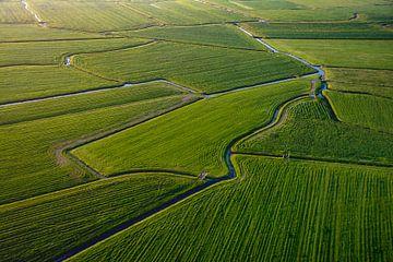 groene lappendeken van grasland vanuit luchtballon van Annette Schoof