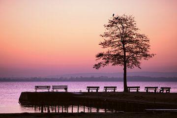 Blauw uur aan het meer van Tanja Riedel