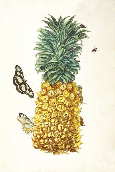 Prent van een ananas van Vintage en botanische Prenten