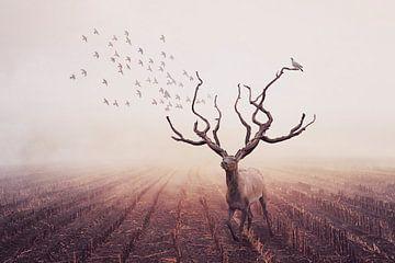 Nature's dearest von Elianne van Turennout