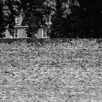 Schauen wir über die Mauer... von FRE.PIC