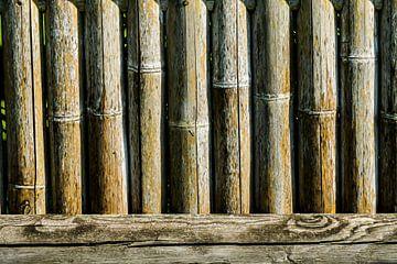 Bamboo von Niek Traas