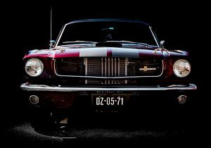 Ford Mustang van