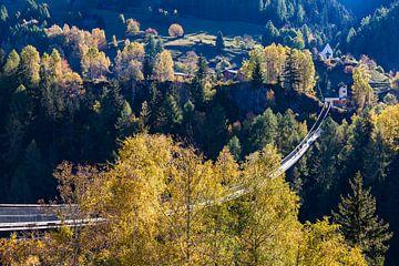 Hängebrücke Goms Bridge im Wallis in der Schweiz von Werner Dieterich