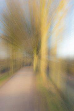 Bewerkte doorkijk door bomen van Piertje Kruithof
