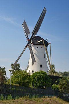 De Witte Molen in Nijmegen van Rob Pols