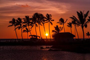 Zonsondergang Hawaii van Tessa Louwerens