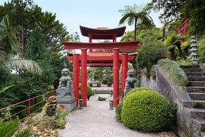 Japanese garden on maadeira island with pagoda