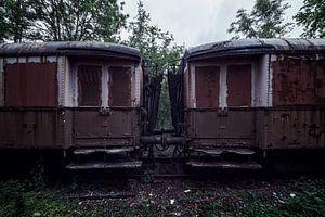 De wagons van een oude verlaten trein van Steven Dijkshoorn