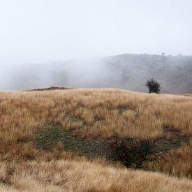 Landschap in de mist in Zuidoost Georgië van Anne Hana