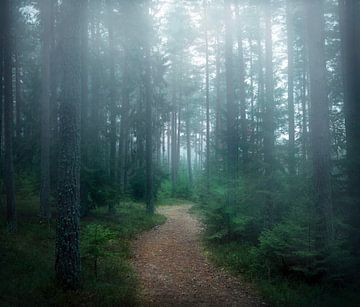 Het bos van geheimen, Christian Lindsten van 1x