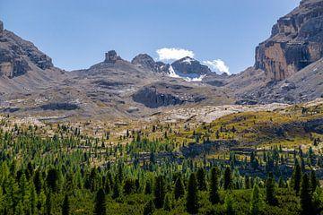 Weitblick von Wald in die hohen Berge in den Dolomiten von Leo Schindzielorz
