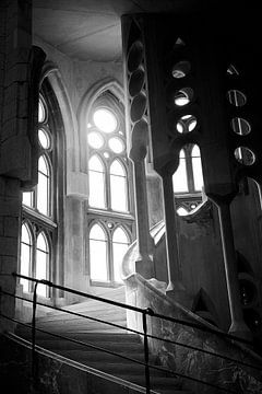 Sagrada Familia van René Egbring