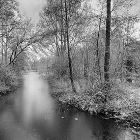 Winter in Eindhoven in 2017 van Robert van Brug