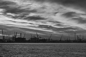 Rotterdamse haven in zwart-wit van