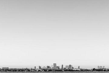 Skyline van Rotterdam van Peter Hooijmeijer
