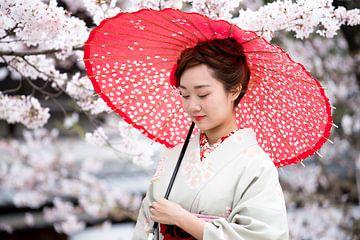 Japan sur Maarten Mensink