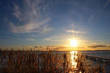 Ein toller Morgen van Ostsee Bilder