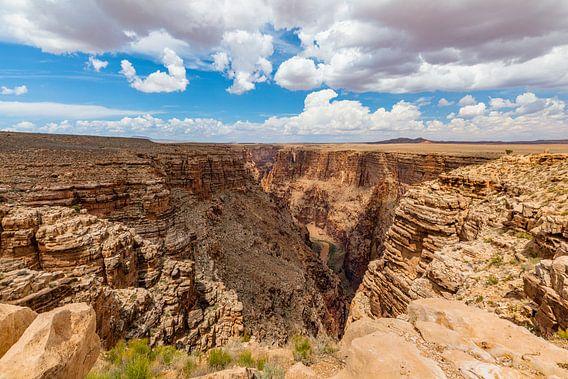 De diepte van de Little Colorado Rivier
