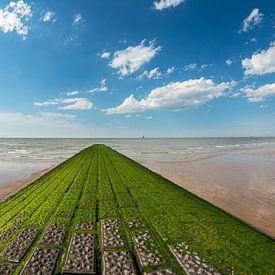 Golfbreker aan het strand bij het Zwin van Gerry van Roosmalen