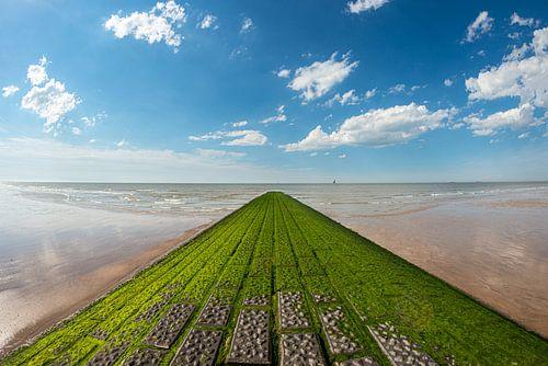Golfbreker aan het strand bij het Zwin van