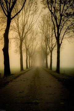 Autumn Lane van Arjen Uijttenboogaart