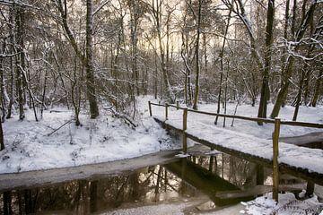 Winterlandschap met brug in het bos van