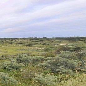 Panorama des dunes sur Erik Reijnders